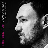The Best of David Gray (Deluxe Edition) by David Gray