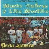 Fiesta Llanera by Mario Suarez