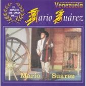 El Disco de Oro De ... Mario Suarez by Mario Suarez