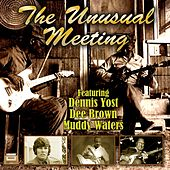 The Unusual Meeting von Various Artists