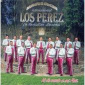 Yo Le Canto a Mi Pais by Mariachi Internacional Los Perez