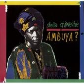 Ambuya by Stella Chiweshe