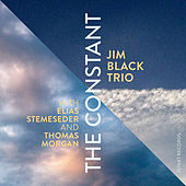 The Constant by Jim Black Trio