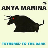 Tethered to the Dark by Anya Marina