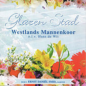 Glazen Stad by Various Artists