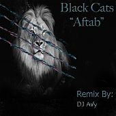 Aftab (DJ Avy Remix) by Black Cats