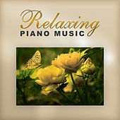 Relaxing Piano Music – Classical Instruments with Mozart and Bach, Classical Rest, Music After Work, Composers After Hours by The Stradivari Orchestra, Classical Ambient Relax Collective,
