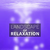 Landscape of Relaxation – Nature Sounds, Pure Nature, Natural Chill, Rest, Deep Sounds by Echoes of Nature