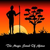 The Magic Sound of Africa by Pete Winter