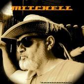 Gunslinger by Mitchell