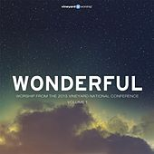 Wonderful: Worship from the 2013 Vineyard National Conference, Vol. 1 by Vineyard Worship