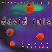 Sweet Mercies by David Ruis