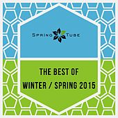 The Best of Winter / Spring 2015 by Various Artists