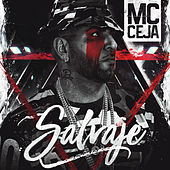 Salvaje by MC Ceja