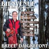 Bienvenue dans le sud de la Louisiane by Bruce Daigrepont