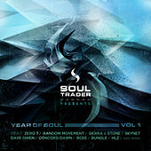 Year of Soul Vol 1 - Sampler 1 by Various Artists