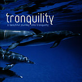 Tranquility by Crimson Ensemble