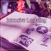 Intensive Learning – Beethoven After Work, Classical Melodies with Beethoven, Easy Exam, Effective Study by Concentration Academy
