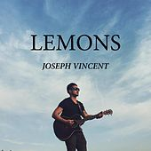 Lemons by Joseph Vincent