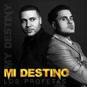 Mi Destino by Profetas