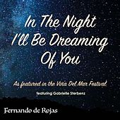 In the Night I'll Be Dreaming of You (feat. Gabrielle Sterbenz) by Fernando Rojas