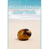 Classical Music After Work – Time With Bach, Music After a Hard Day, Classical Sounds for Soul by Soulive