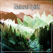 Natural Spirit – Cleanse the Spirit, Resting Sleep, Ambient, Waves Therapy, Serenity by Nature Sounds for Sleep and Relaxation