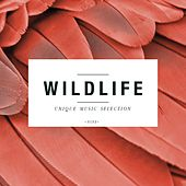 Wildlife - Unique Music Selection, Vol. 9 by Various Artists