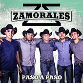 Paso A Paso by Zamorales