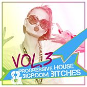 Progressive House & Bigroom Bitches, Vol. 3 by Various Artists