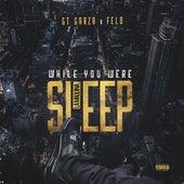 While You Were Sleep by Felo
