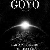 Transformacion Industrial by Goyo