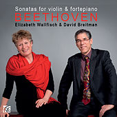 Beethoven: Sonatas for Violin and Fortepiano, Vol. 2 by David Breitman