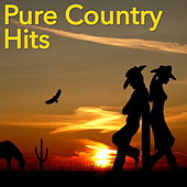 Pure Country Hits von Various Artists