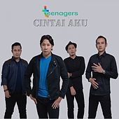 Cintai Aku by The Teenagers