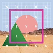 Arbina by Noura Mint Seymali