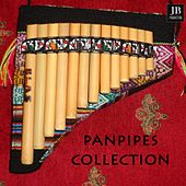 Panpipes Collection by Fly Project
