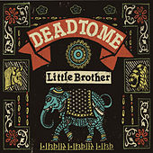 Little Brother by Dead To Me