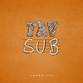 Fav Sub by Shawn Lee's Ping Pong Orchestra