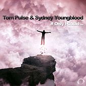 If Only I Could by Tom Pulse