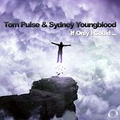 If Only I Could (The Hands up Remixes) by Tom Pulse