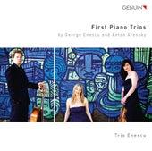 Enescu & Arensky: First Piano Trios by Trio Enescu