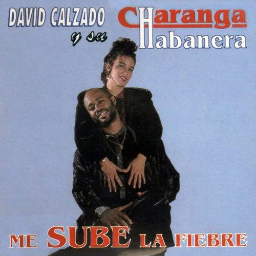 Me Sube la Fiebre (Remasterizado) by David calzado y su Charanga Habanera