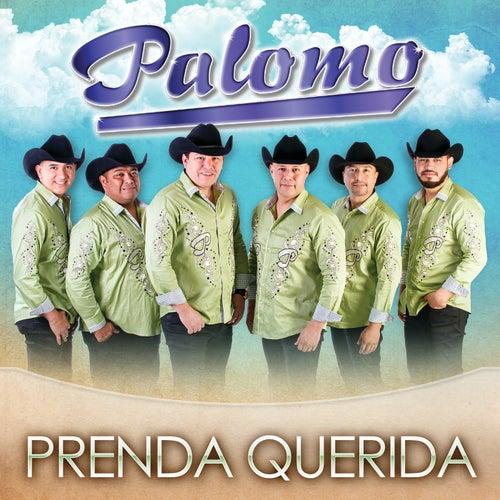 Prenda Querida by Palomo