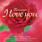 Because I Love You by Shannon Singers