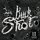 12 Gauge by Buckshot