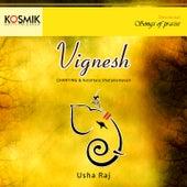 Vignesh by Usha Raj