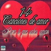 14 Canciones de Amar - Para Ti Que Sabes Amar by Various Artists