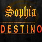 Destino by Sophia