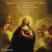 Biber: The Mystery Sonatas for Violin (Scordatura) and Continuo, Vol.2 by Monica Huggett